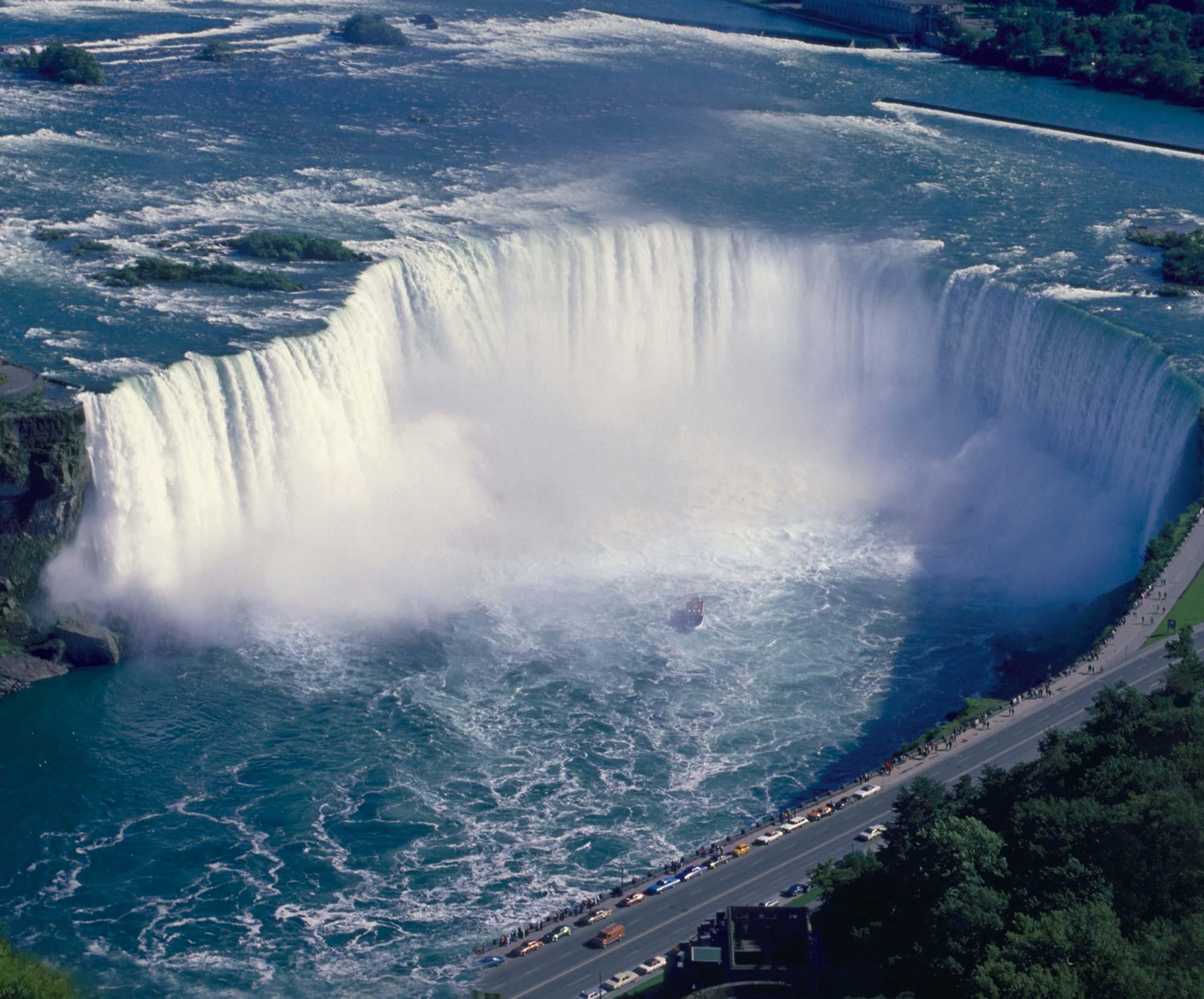Niagara viagra