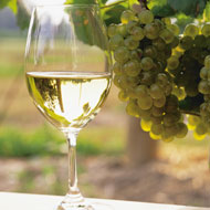 Embassy Suites by Hilton Niagara Falls Fallsview - Half Day Wine Tour Package