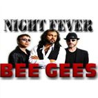 Night Fever: Bee Gees Tribute Live Theatre Package